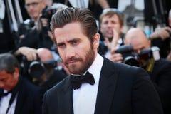 gyllenhaal jake стоковое изображение rf