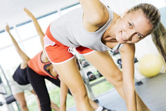 In gym. Portrait of young nice people  getting busy in gym Royalty Free Stock Photo