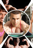 Gym. The champion in a fitness center- collage Stock Photos
