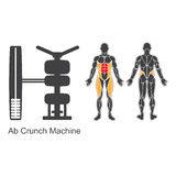 Gym ab crunch machine Royalty Free Stock Images