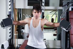 Gym athlet. Training his muscles royalty free stock images