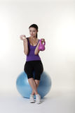 The gym ball Stock Images