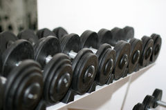 Gym barbell Stock Photography