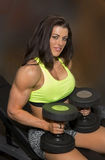 Gym Beauty Prepares for Workout Stock Image