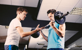 Gym buddies working out bicep exercise Royalty Free Stock Photography