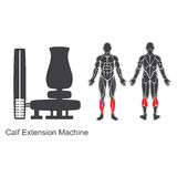 Gym calf extension machine Stock Images