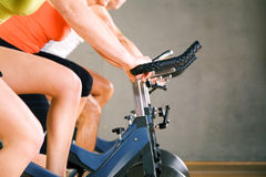 Gym Cycling Stock Image