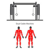 Gym dual cable machine Royalty Free Stock Photography