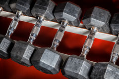 Gym Dumb Bells Stock Photography