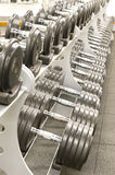 Gym equipment. Gym or gymnasium equipment in a world-class facility suitable for athletes training for international events. Picture shows a row of dumbbells stock photos