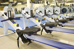 Gym equipment. Gym or gymnasium equipment in a world-class facility suitable for athletes training for international events. Picture shows rowing machines stock photos