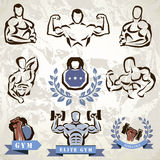 Gym, fitness emblems collection Royalty Free Stock Photo