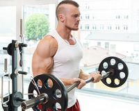 Gym. Handsome man during workout Royalty Free Stock Images