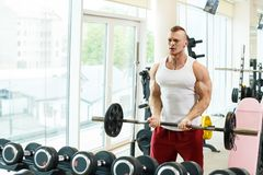 Gym. Handsome man during workout Stock Images