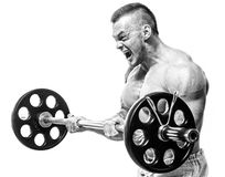 Gym. Handsome man during workout Royalty Free Stock Image