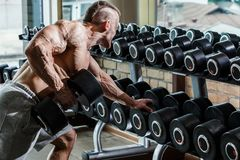 Gym. Handsome man during workout Stock Photos