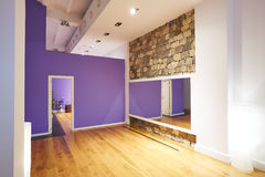 Gym indoor with wooden floor and mirror. Gym indoor with wooden floor mirror and stone wall Royalty Free Stock Image