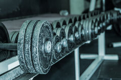 Gym iron Stock Photography