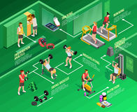 Gym isometric Infographics Stock Photography