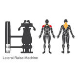 Gym lateral raise machine Royalty Free Stock Images