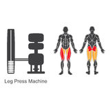 Gym leg press machine Stock Photo