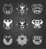 Gym logo. Set of monochrome fitness emblems, labels, badges, logos and designed elements. can be used as  or icon Royalty Free Stock Image
