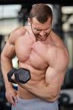 Gym man Royalty Free Stock Photo