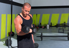 Gym man with dumbbells exercise crossfit. Gym man with dumbbells weights lifting exercise crossfit fitness workout Stock Photos