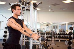 Gym: Man Gets Arm Workout During Session Stock Images