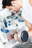 Gym man lifting weights Stock Photography