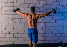 Gym man rising hex dumbbells weightlifting rear Stock Photos
