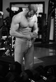 Gym man Stock Photography