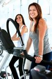 Gym people on cardio machines Stock Images
