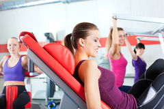 Gym people doing strength or fitness training. Four young women doing strength or sports training in gym for a better fitness Stock Image