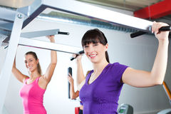 Gym people doing strength or fitness training. Happy, young women doing strength or sports training in gym for a better fitness Royalty Free Stock Image