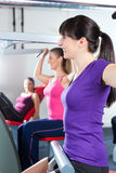 Gym people doing strength or fitness training. Happy, young women doing strength or sports training in gym for a better fitness Stock Photography