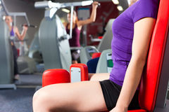 Gym people doing strength or fitness training. Young women doing strength or sports training in gym for a better fitness Royalty Free Stock Images