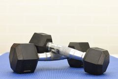 At the Gym Royalty Free Stock Images