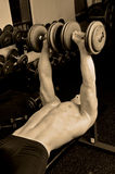 Gym time. Model doing bench presses Royalty Free Stock Images