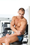 Gym training Royalty Free Stock Image