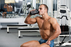 Gym training Royalty Free Stock Photo