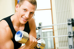 Gym training with dumbbells Royalty Free Stock Photo