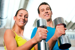Gym training with dumbbells Royalty Free Stock Images