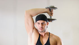 Gym training workout Royalty Free Stock Images
