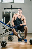 Gym training workout Royalty Free Stock Photography
