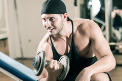 Gym training workout. Young adult man is working out in gym Royalty Free Stock Photos
