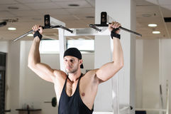 Gym training workout Royalty Free Stock Photo