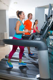 Gym treadmill group running indoor Stock Images