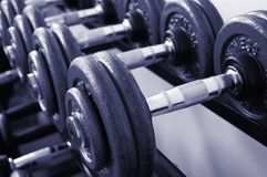 Gym Weights stock photos