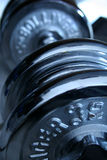 Gym weights. Dumbells Royalty Free Stock Photography